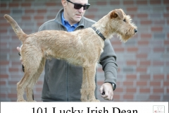 20180912-101-Lucky-Irish-Dean