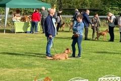 Dorsten 2021 - Irish Terrier Leute